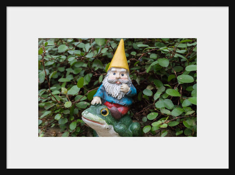Whimsical Art - Garden Gnome Fine Art Print - april bern photography