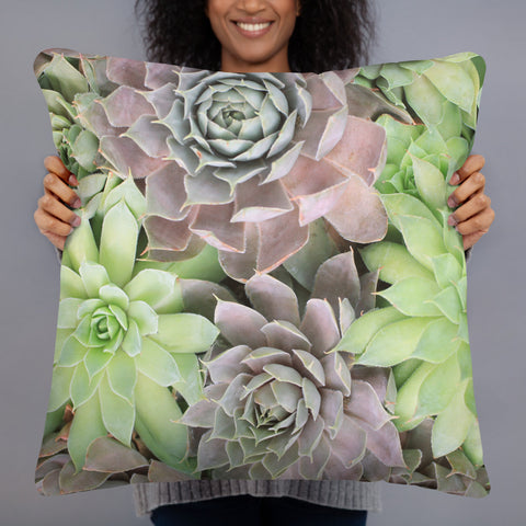 Succulent Garden Throw Pillow - april bern photography