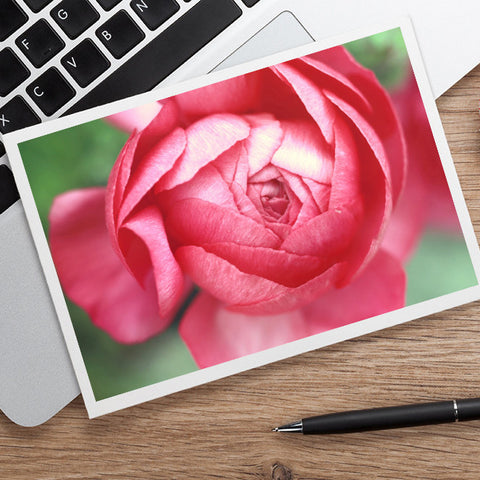 Pink Peony Photo Notecard, Floral Stationary - april bern photography