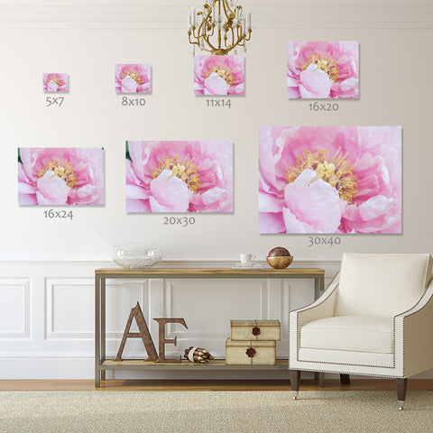 Pink Peony Print - Peony Photography - april bern photography