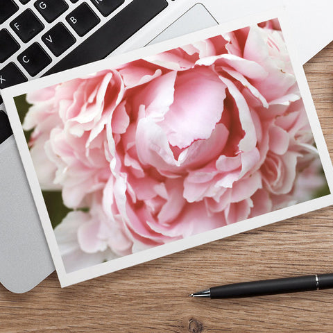 Pink Peony Notecard, Floral Blank Greeting Card