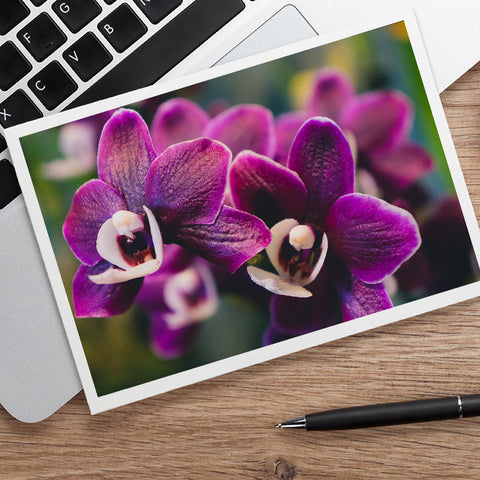 Purple Orchid Photo Notecard, Orchid Stationary