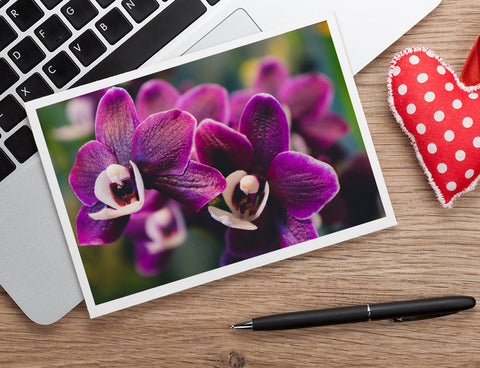 Purple Orchid Photo Notecard, Orchid Stationary - april bern photography