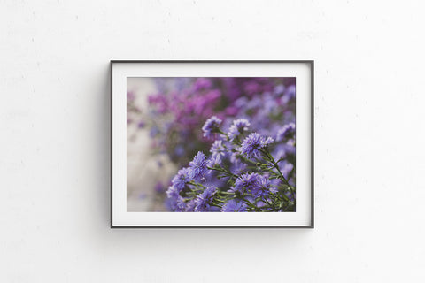 Printable photography - purple flowers
