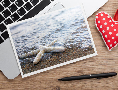 Starfish Photo Notecard - Seashell Card - april bern photography