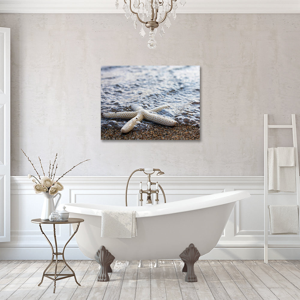 Starfish Gallery Wrapped Canvas, Ready to Hang Canvas Art - april bern photography