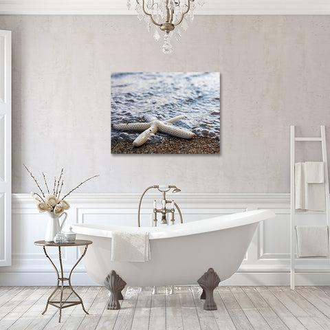 Starfish Gallery Wrapped Canvas, Ready to Hang Canvas Art