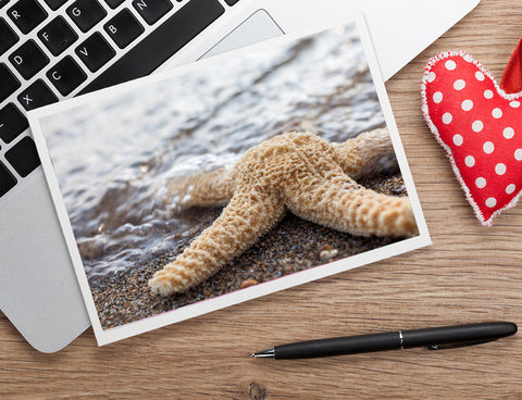 Starfish Photo Note Card - Blank Seashell Card - april bern photography
