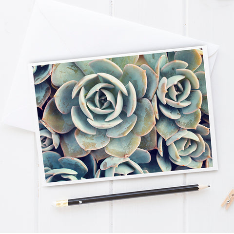 Succulent Card, Blank Notecard Card