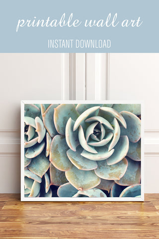 Printable Art - Succulent Instant Download