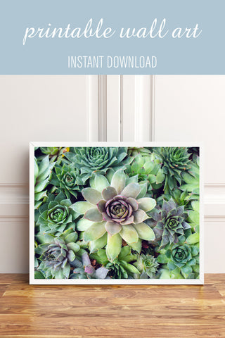 Printable Art - Succulent Garden Instant Download