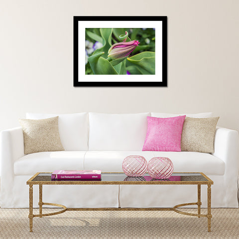 Tulip Fine Art Photography - Botanical Art - april bern photography
