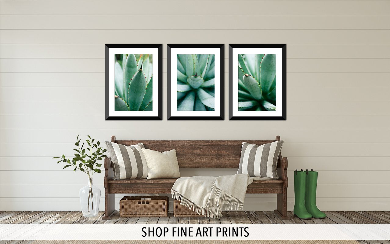 Shop Fine Art Prints for your home or office