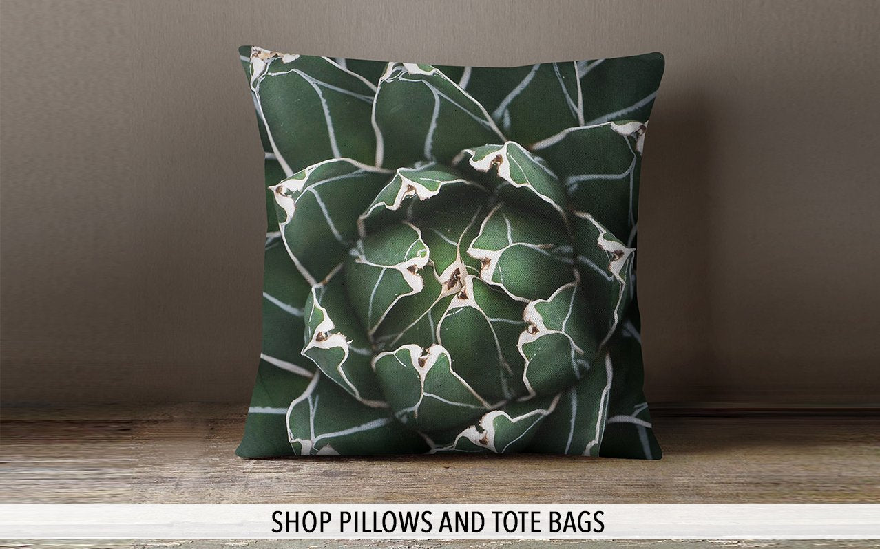 Shop Pillows and Tote Bags