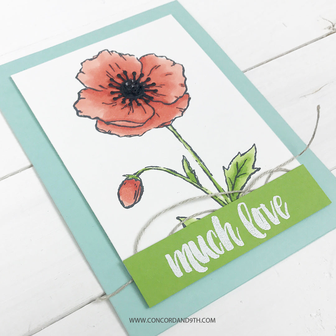 Pretty Poppy Bundle