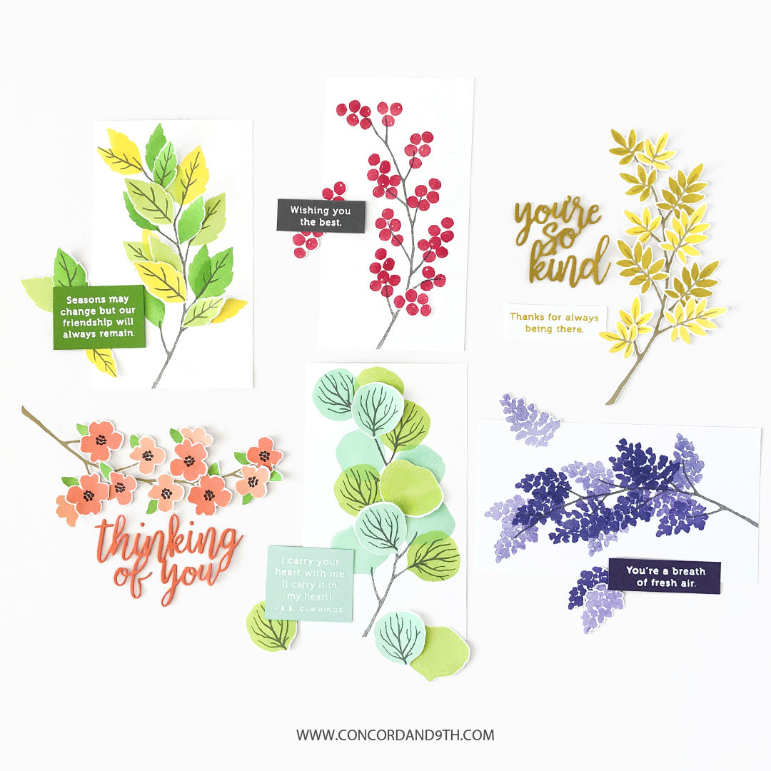 Seasonal Branches Bundle