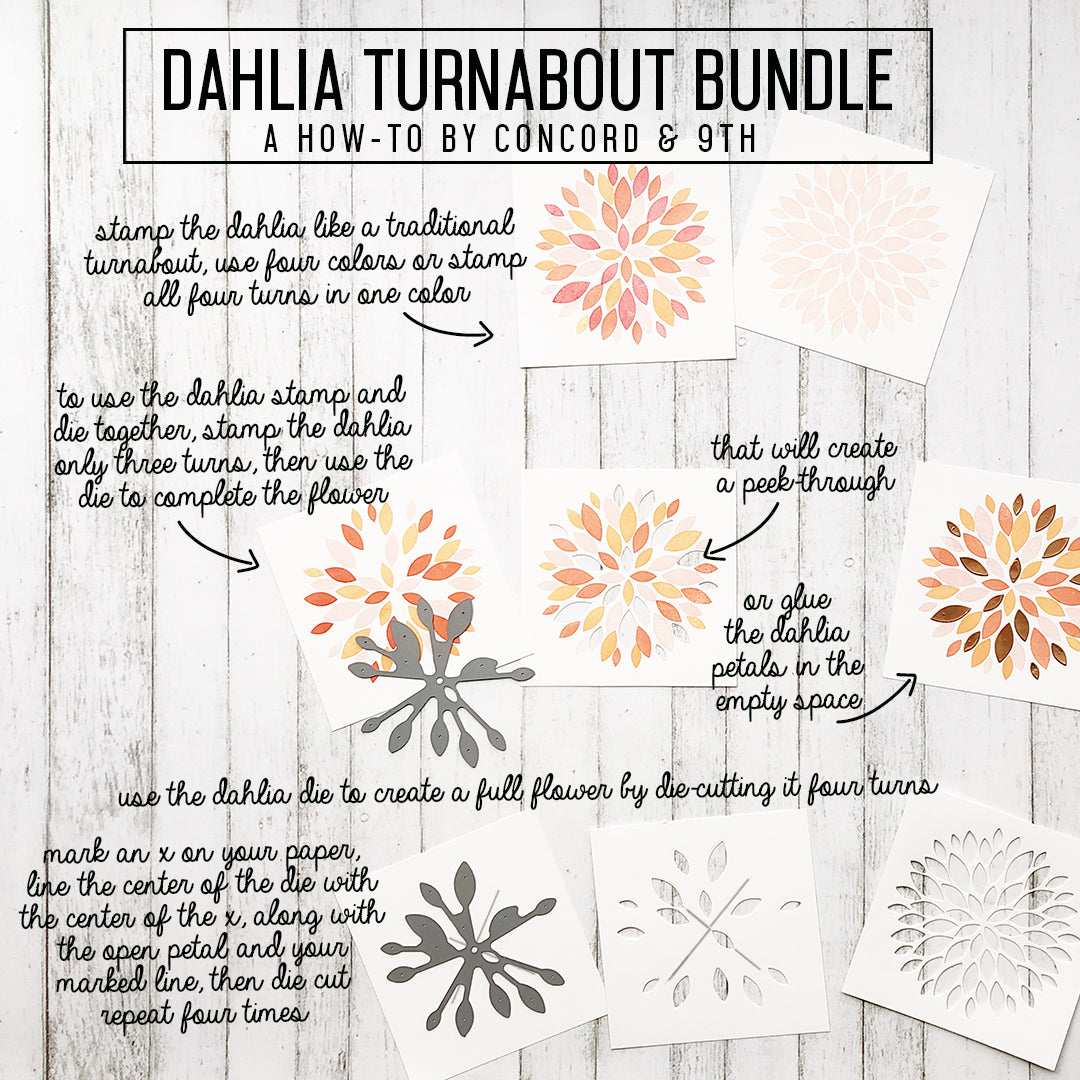 Dahlia Turnabout™ Bundle