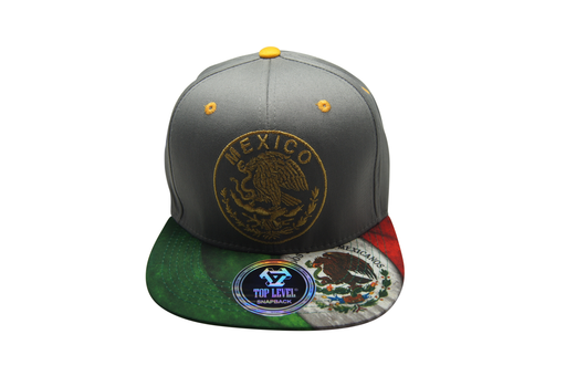 Flat Bill Mexico 3D Embroidery Grey - Green Bill