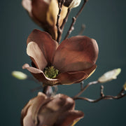 Flower, Magnolia, Brown - Artificial