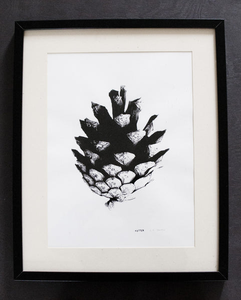 Screenprint Kotten (pinecone) 32 x 46 cm