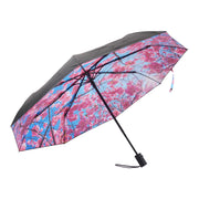 Umbrella Cherry
