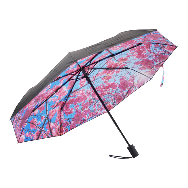 Umbrella Cherry - Blabar
