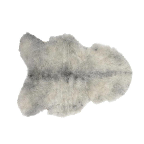 Sheepskin Icelandic - Shorthaired in Natural Grey - Blabar