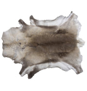 Reindeer Hides from Northern Sweden