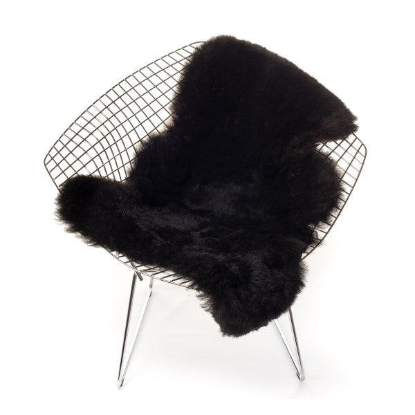Sheepskin Icelandic - Shorthaired in Black