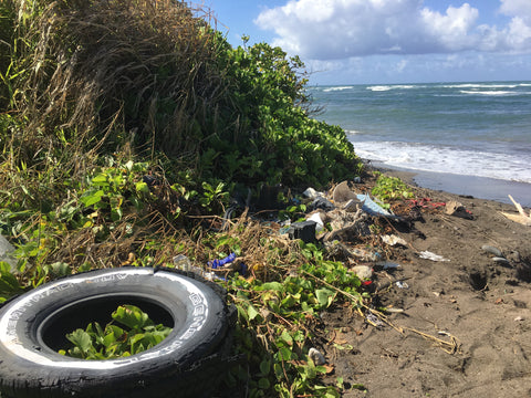 Beach cleanup in maui