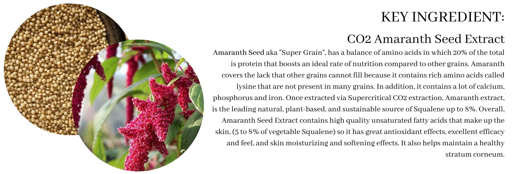 Amaranth Seed Extract