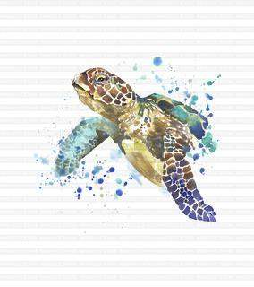 Sea Turtle Panel - Summer 2020 Reprints