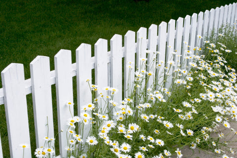 Decorating with Color: White Picket Fence