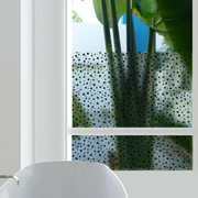 Star Struck Privacy Window Film — For Home Window Tinting - StickPretty