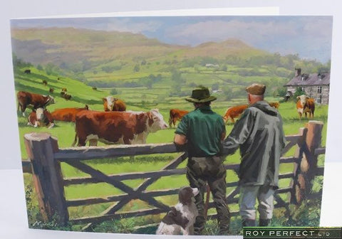 Checking the Cattle Greetings Card - Roy Perfect LTD Gifts