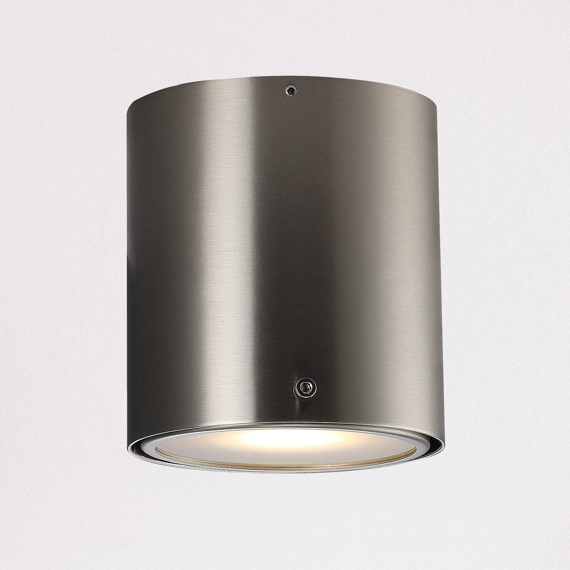 Bathroom Surface Mounted Downlight - Brushed Steel
