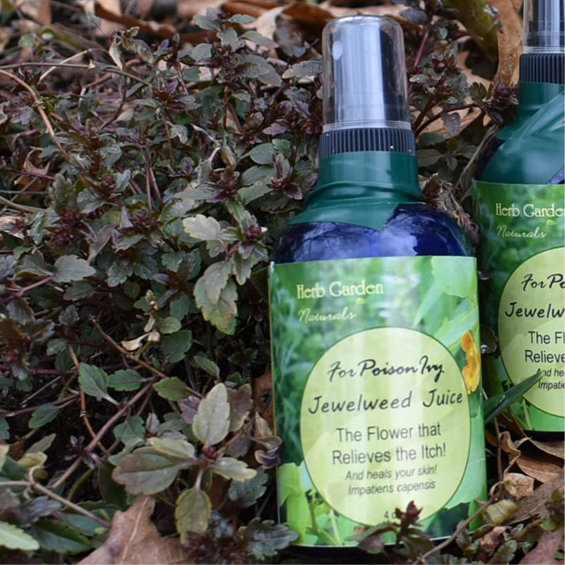 Jewelweed Juice Organic Natural Poison Ivy Therapy Spray Herb Garden Naturals