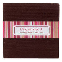 Gingerbread - Bath Soak