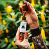 Full Spectrum CBD 300mg 30mL - Honey Rose Botanicals