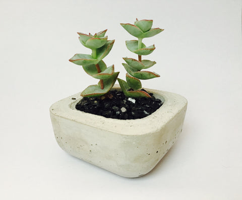 Short Stack Small Concrete Planter