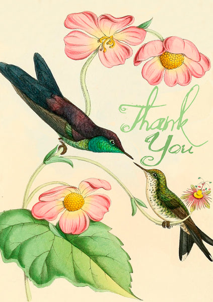 Birds Thank You Card - Belle De Provence
