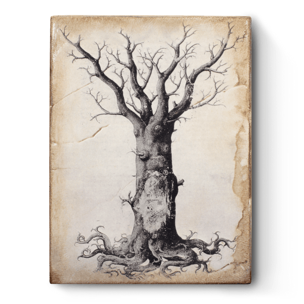 Sid Dickens - T125 Medieval Tree of Life