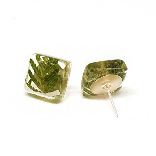 Square Post Earrings with Ferns