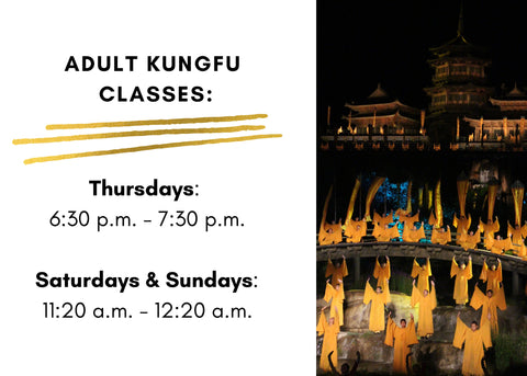 Adult Kung Fu Classes Las Vegas
