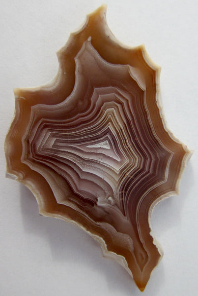 Spider Web Agate