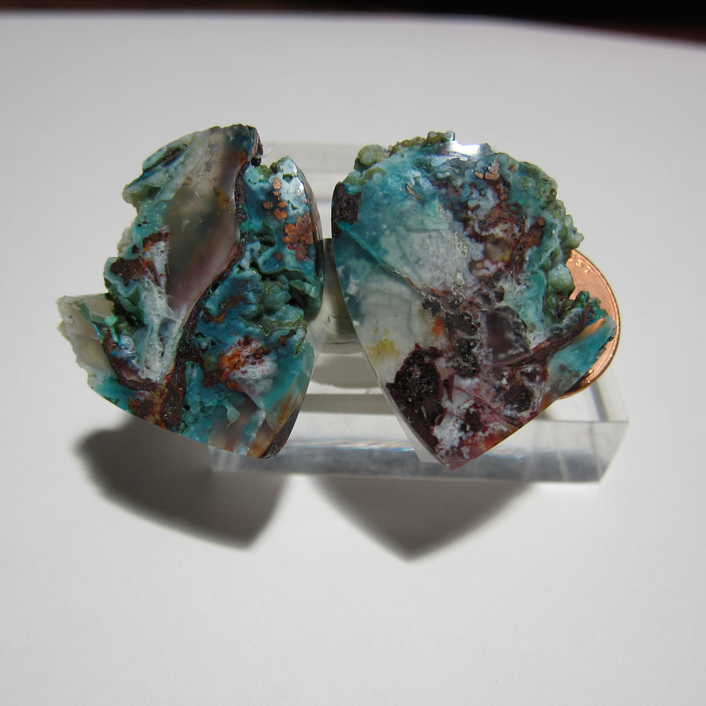 Blue Opal with Native Opal Pair V 366
