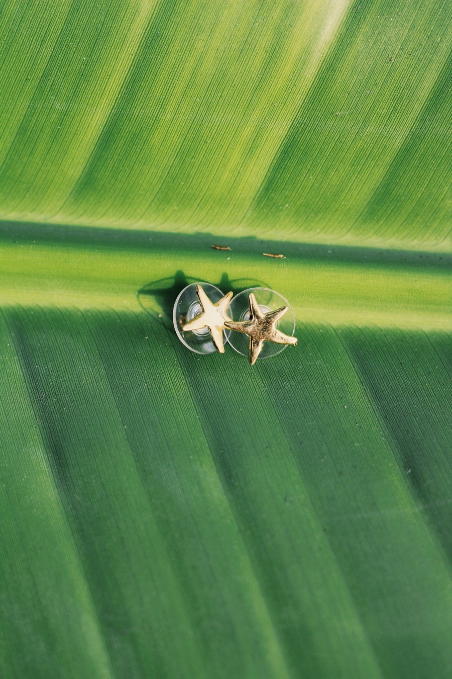 Sea Star Studs - L A G O O N DESIGNS