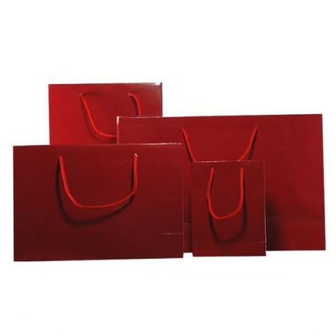 Gloss Lamnated Boutique Gift Bags