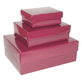 Light Pink Rectangle Gloss Laminated Gift Boxes - 2 Pieces