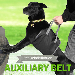 Pet Dog Auxiliary Belt Carrier Bag Assist Sling Outdoor Portable Lift Support Rehabilitation Harness
